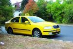 Zukunftskompatibel: Dieses Auto kann auch nach dem 31. August 2014 ein Taxi bleiben.