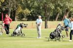 36-37_golf (1)