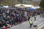 Illegális bevándorlás - Osztrák-szlovén határ