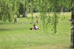 Bald vorbei? Noch immer ist nicht klar, wie der Park am Ende aussehen wird. (BZT-Fotos: Nóra Halász)